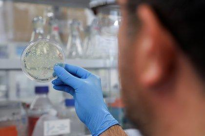 Incluso cuando los planes de implementación de vacunas enfrentan obstáculos de distribución y asignación, las nuevas variantes de SARS-CoV-2 podrían ser más transmisibles y resistentes a las vacunas (Efe)