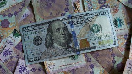 El viernes 25 de octubre, en la previa electoral, el dólar al público marcó un récord de $65 para la venta. (Reuters)
