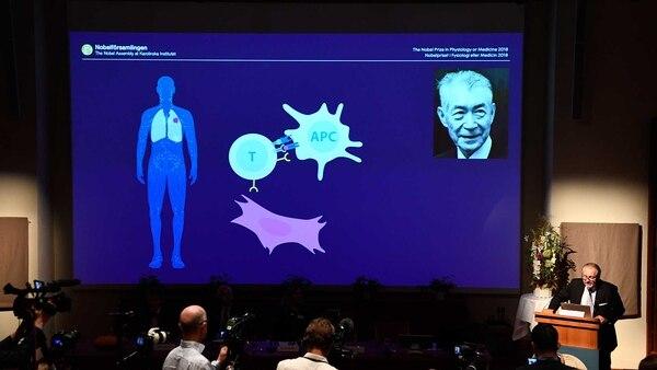 """Durante la presentación del galardón compartido a Tasuku Honjo: la explicación de los """"frenos"""" en los linfocitos T que reducen la efectividad del sistema inmunológico contra el cáncer (AFP)"""