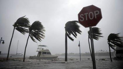El huracánIrma golpeó a Miamien septiembre de 2017. (Carlos Barria/Reuters)