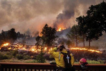 Cerca de 12.000 rayos cayeron en las últimas 72 horas, dijeron funcionarios, desatando incendios que dejan un espeso humo sobre buena parte del centro y norte del estado (AP/Noah Berger)