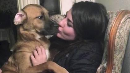 La foto sin fecha provista por Jessica Sardina muestra a Honey con ella en Bangor, Maine. La batalla entre la mujer y su exnovio por la custodia de la mascota llegó a la Corte Suprema. Foto: AP/Jessica Sardina