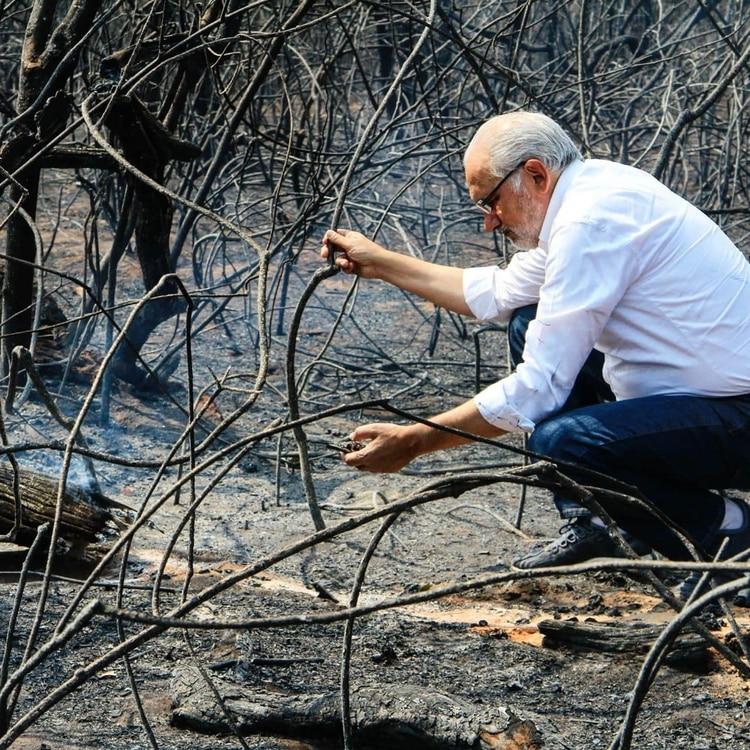 Carlos Mesa, en la zona de los incendios forestales que afectaron en las últimas semanas a Bolivia