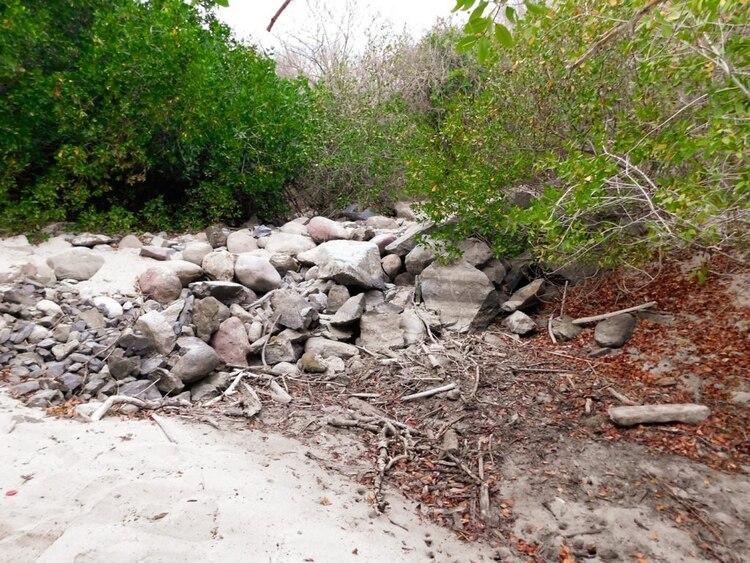 Piedras colocadas en el acceso a la playa por las que Boy Tamborell, argumentó que se está causando daño ambiental (Foto: Violeta Meléndez/MCCI)