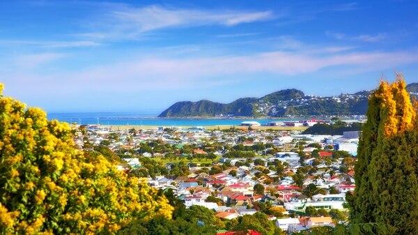 Wellington, la ciudad preferida por los millennials(Shutterstock)
