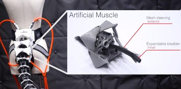 La cola Arque se ensambló a partir de seis vértebras plásticas interconectadas (Foto: Especial)