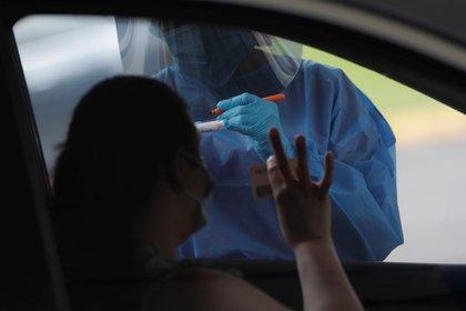 La prueba se realiza tomando una muestra del paciente usando un hisopo insertado en un tubo de ensayo con líquido (EFE/Bienvenido Velasco)