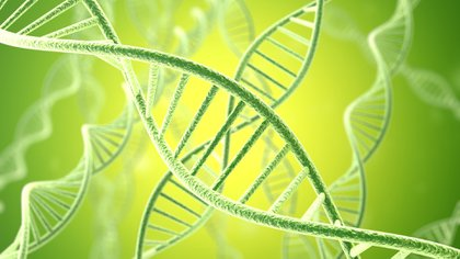El 80% de las Epof es por una condición genética familiar (iStock)