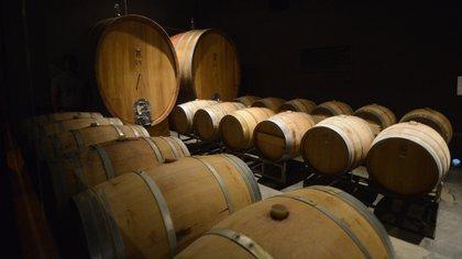 Los vinos mendocinos ganaron mucho terreno en el mercado chino en el último tiempo y pretenden consolidarse en el gigante asiático. Foto: Fernando Calzada.