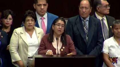 La diputada de Morena, Miroslava Sánchez, presidenta de la Comisión de Salud, dijo que los derechos sociales han sido una prioridad para esta legislatura y para el gobierno federal (Foto: Twitter@Mx_Diputados)