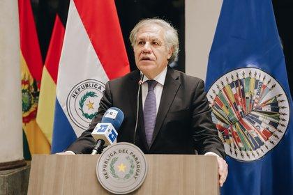 Luis Almagro, secretario general de la Organización de los Estados Americanos, dijo que está