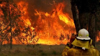 Incendios en Nueva Gales del Sur (Reuters)