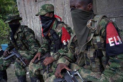 Guerrilleros del grupo terrorista ELN, de importante presencia en Venezuela (Reuters/ Federico Ríos)