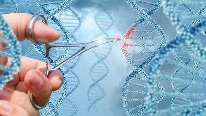 CRISPR es la tecnología genética que aspira a revolucionar el campo medicinal (iStock)