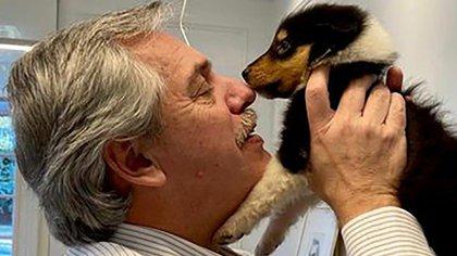 La nueva hija de Dylan, el perro presidencial (@DylanFerdez)