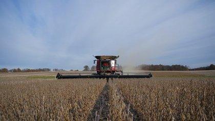 Una vez más hay cruces entre el campo y el gobierno por las retenciones a la soja (REUTERS/Bryan Woolston)