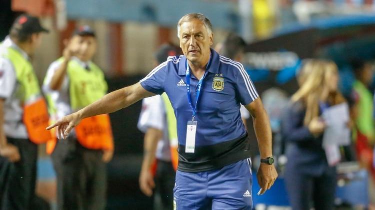 Carlos Borrello, entrenador de Argentina (Nicolás Aboaf)
