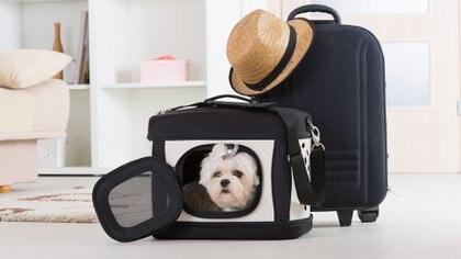 Hay que tener en cuenta distintos factores y elementos del viaje (iStock images)