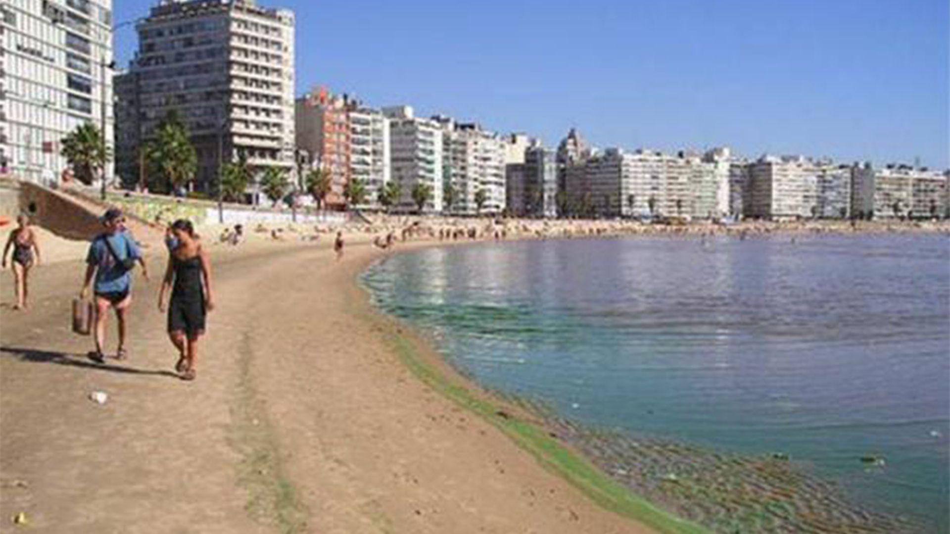En 2019, en playas de Montevideo y Canelones, los guardavidas recurrieron a la bandera roja con una cruz verde para recomendar el alejamiento de una espuma tóxica que conformaba una mancha verdosa, tanto en el agua como en la arena