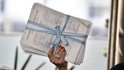 Las firmas fueron entregadas a los diputados para ser presentadas en el plenario que discute la despenalización del aborto