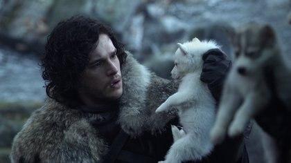 Se estima según informes de PETA refugios de Reino Unido han visto un incremento del 700% en el abandono de huskies, en lo que va de la serie