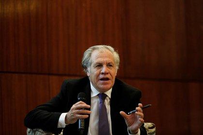 En la imagen, el secretario general de la Organización de Estados Americanos (OEA), Luis Almagro. EFE/Bienvenido Velasco/Archivo