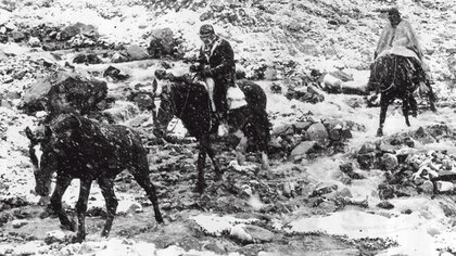 El periodista Alfredo Serra en medio de la travesía andina, a bordo de un caballo