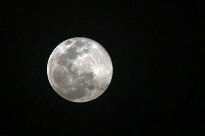 Según algunas fuentes como las nativas americanas y europeas, la luna de marzo es la luna de los gusanos, pues con la llegada de la primavera el sol calienta mucho el suelo y aparecen las lombrices, lo que atrae a las aves.  Yautepec, Morelos, 28 de marzo de 2021.