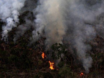 El Amazonas en llamas (REUTERS/Ricardo Moraes/File Photo)
