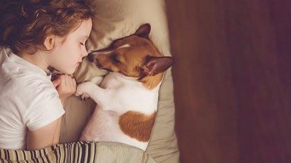 La conexión y empatía que se desarrolla entre ellos y los niños a través del juego es casi automática (Getty Images)