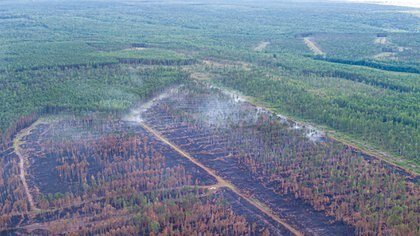 Vista aérea de un incendio en la región de Krasnoyarsk, Rusia (Julia Petrenko/Greenpeace via REUTERS)