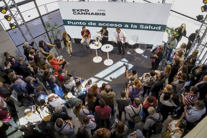 Durante la Expo Cannabis Argentina 50 mil personas pasaron por la Rural en busca de información y acceso seguro a la planta (Gentileza Expo Cannabis)