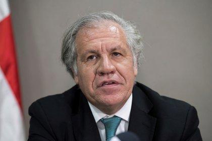 En la imagen, el secretario general de la Organización de Estados Americanos (OEA), Luis Almagro. EFE/Orlando Barría/Archivo