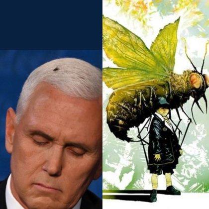 Meme de Twitter sobre la mosca que se posó el pelo de Pence