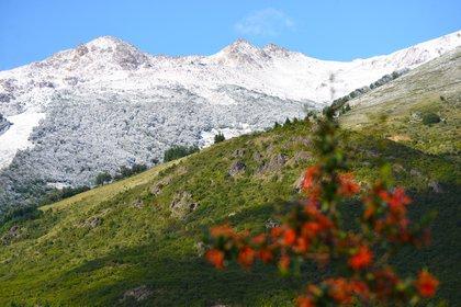 Bariloche, también compite en verano (Jorge Wohlert)