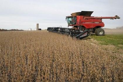 Una máquina cosechando soja (REUTERS/Bryan Woolston)