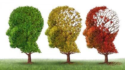 Las demencias son provocadas por diversas enfermedades que afectan a la memoria, el pensamiento, el comportamiento y la capacidad para realizar las actividades cotidianas