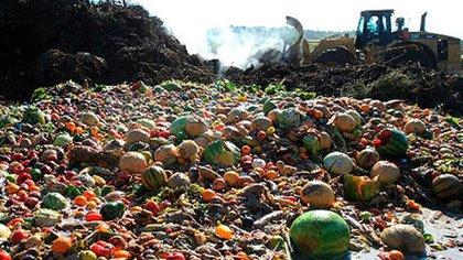 En Argentina se desperdician aproximadamente 16 millones de toneladas de comida por año