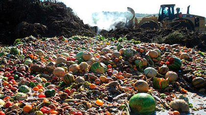 Más de1300 millones de toneladas de alimentos se tiran cada año en el mundo