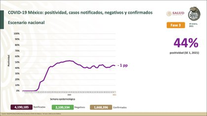 Datos de positividad y notificaciones en México (Foto: SSA)