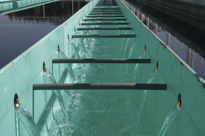 El Sistema Cutzamala es un sistema hídrico de almacenamiento, conducción, potabilización y distribución de agua dulce para la población e industria del Valle de México  (Foto: Cuartoscuro)