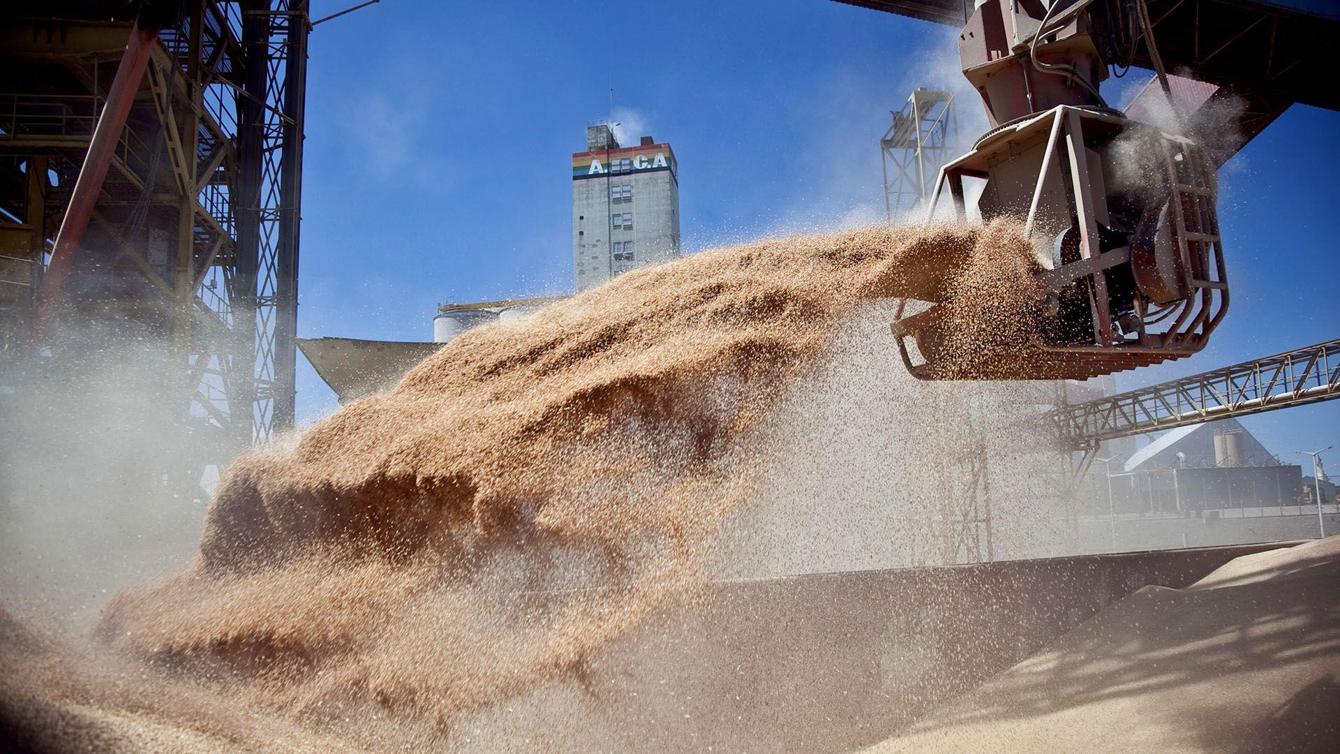 La suba de precios internacionales impacta positivamente en los valores de las exportaciones de soja, maíz y trigo de la actual campaña  (Télam)