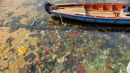 El plástico se transformó en un elemento más del paisaje terrenal (iStock)