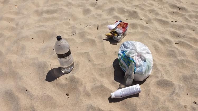 """Verónica García de Vida Silvestre Argentina: """"Generalmente en las playas, al menos en Mar del Plata, no hay cestos diferenciados para residuos orgánicos e inorgánicos"""" (Ramiro Souto)"""