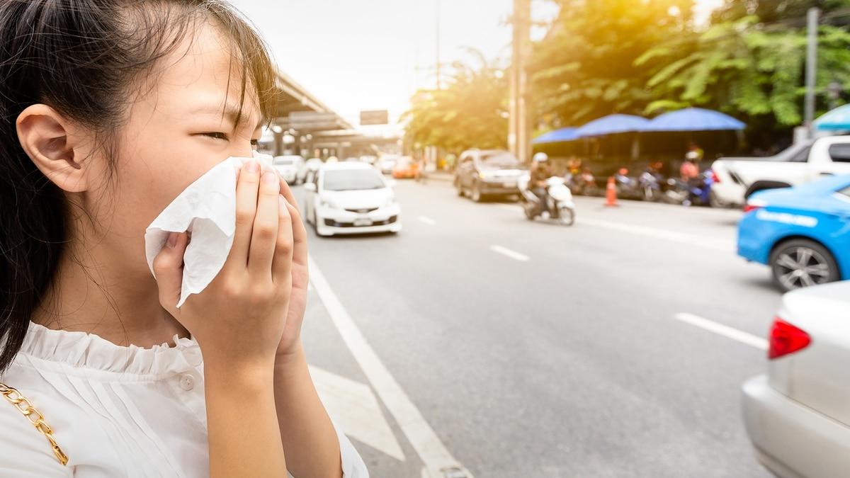 China confirmó que el misterioso coronavirus se transmite entre personas y la OMS convocó a un comité de emergencia - Infobae