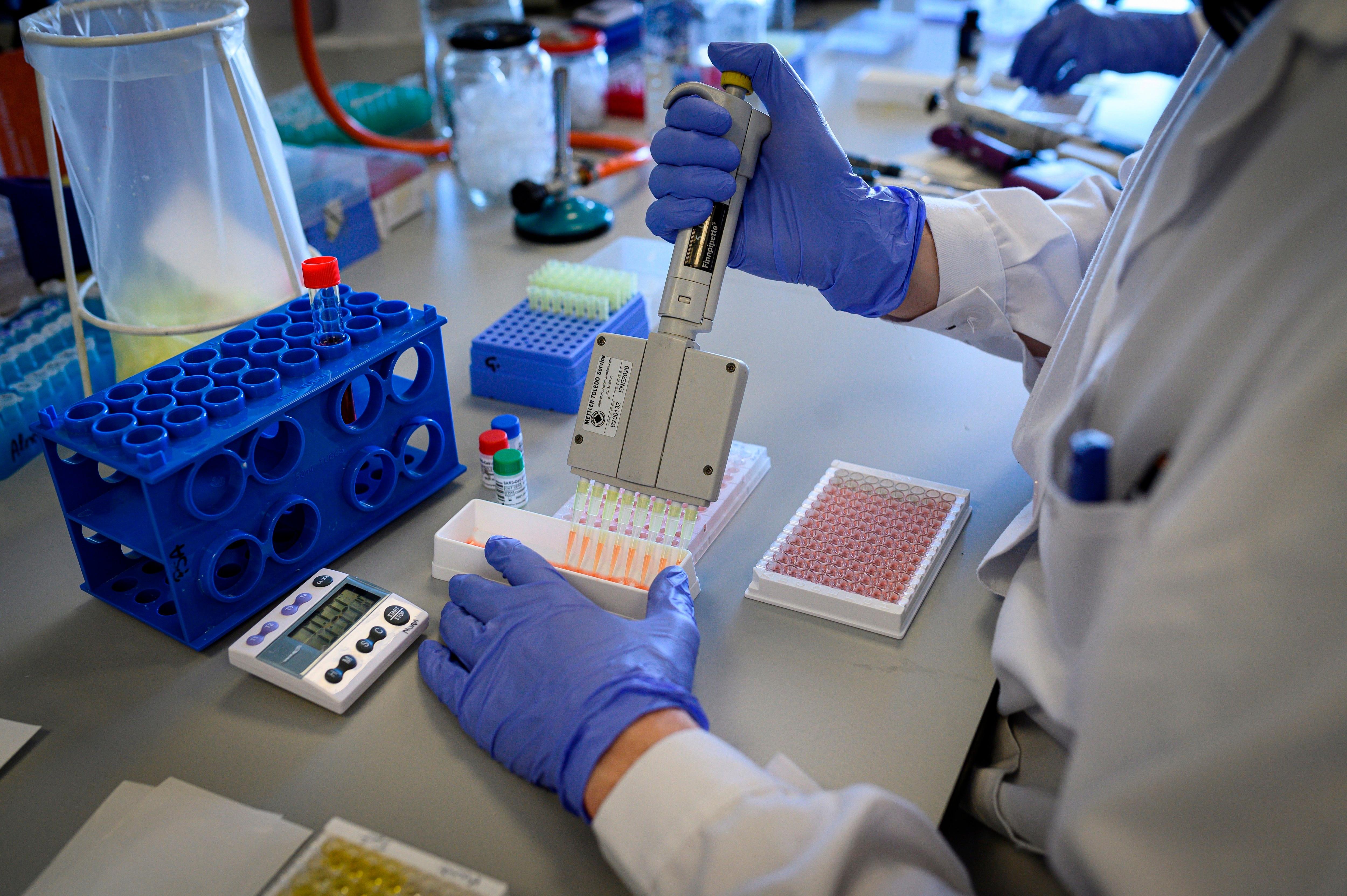 Un estudio demostró que el uso terapéutico de estas células es factible, seguro y bien tolerado por los pacientes con EM (FE/Fernando Villar/Archivo)