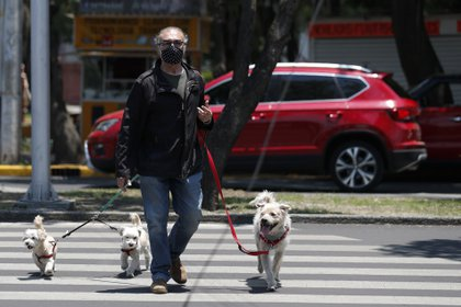 A man wearing a face mask walks his dogs in Tlalpan, Mexico City, Monday, May 25, 2020. Authorities have predicted that coronavirus cases in the city would peak in May, with reopening measures currently slated for mid-June. (AP Photo/Rebecca Blackwell)