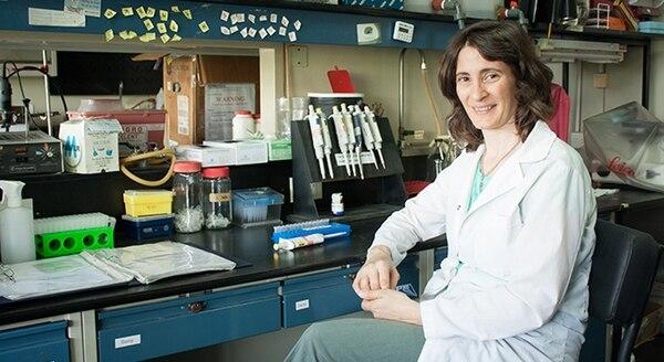 La neurocientífica argentina Verónica Piatti demostró que la actividad de una región del cerebro es clave para la memoria de trabajo