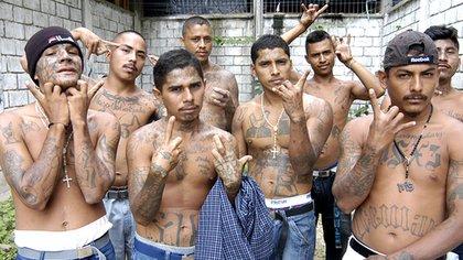 Las bandas criminales son el elemento característico de la violencia en América Latina. En la imagen miembros de una mara salvatrucha