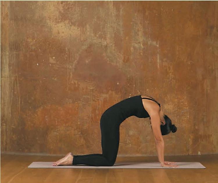 2.Exhalá y levantá la columna vertebral